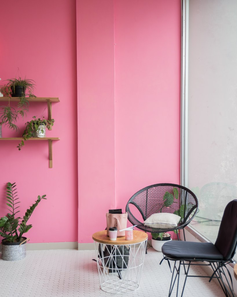 two chairs and a small table, overhead shelves and plants in pots, pink background
